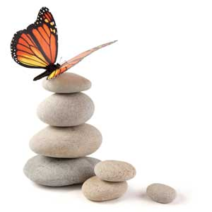 butterfly on stack of stones